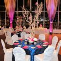 Metropolitan-Blue-Pink-and-White-Decor